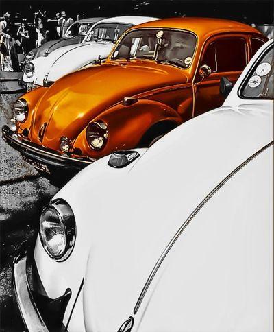 My edit to @monicagueiros5 's great photo! Obrigada por me deixar editar sua foto, espero que goste. HDR Colorsplash Eye4photography  Collabs_Unlimited