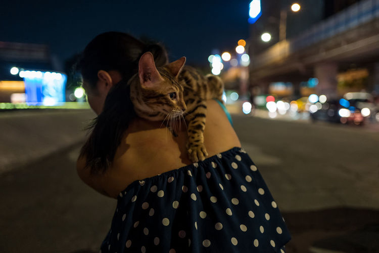 Rear View Of Woman Carrying Cat On Street In City At Night