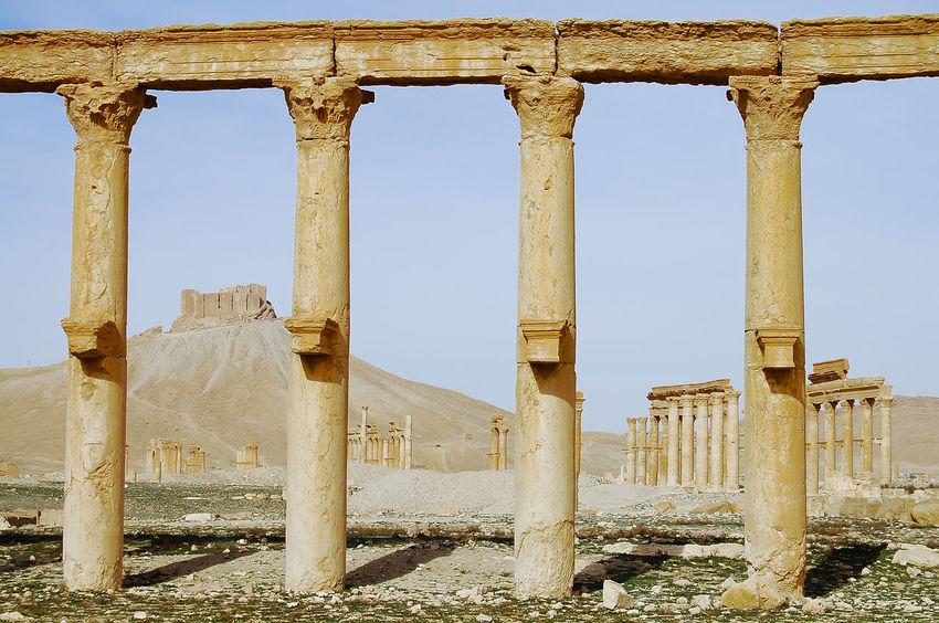 Palmyra Ruins - Syria Palmyra Ruins Syria  Ancient Civilization Palmyra Roman