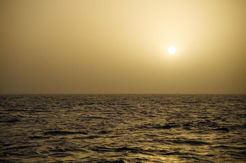 Saharan dust in the air transported from shore to sea Atlantic Ocean Climate Dust Environmental Sciences Horizon Over Water Mauretania Nature Rainforest Fertilization Saharan Dust Sea Sun Sunset