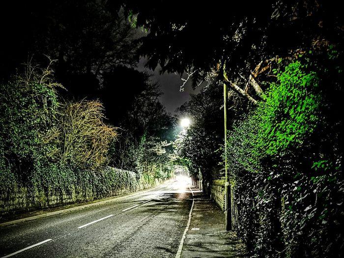 Street amidst trees at night