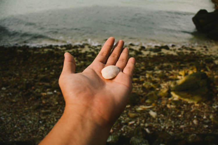 Cropped image of hand holding sea shore