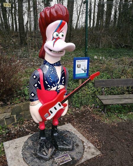 Ziggy Starduck! David Bowie Ziggystardust WWT Washington Duck Wildlife & Nature Tree Childhood Christmas Decoration Snowman Human Representation Grass