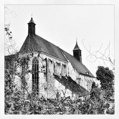 #church #abbey #monastery #neukloster #bnw #wienerneustadt #austria Church Austria Bnw Abbey Monastery Wienerneustadt Neukloster