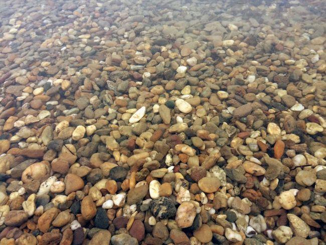 Lake shallow water