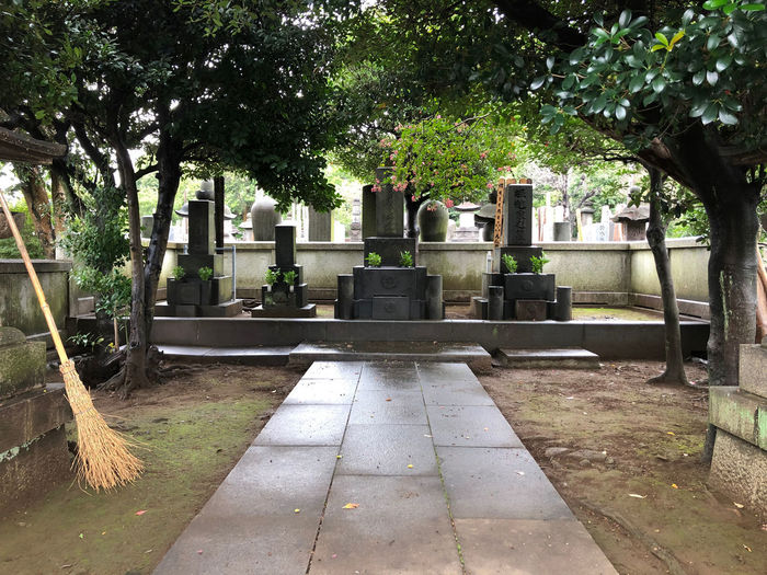 Spirituality Grave Cemetery No People Tree Japanese Culture