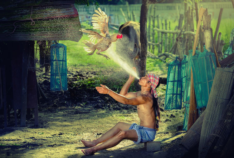Full Length Of Shirtless Man Spraying Water On Flying Rooster