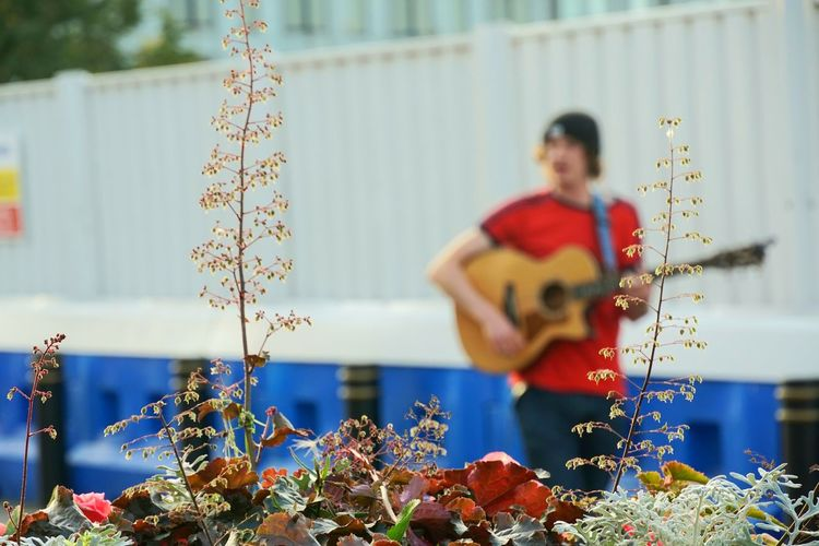 Defocused image of man playing guitar outdoors