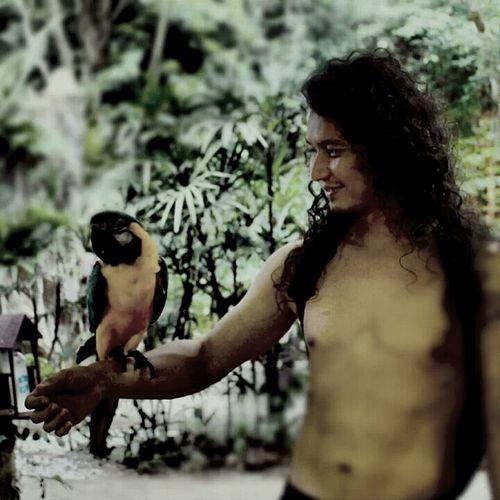 Island Life Birds... Happy
