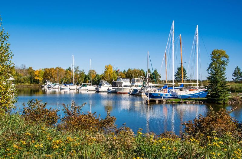 Knife River Marina Nautical Vessel Water Moored Mode Of Transport Tranquil Scene Boat Reflection Transportation Day Clear Sky Nature Sailboat Outdoors No People Tranquility Blue Scenics Tree Lake Mast Malephotographerofthemonth Streamzoofamily Minnesota Fall Beauty Northshore