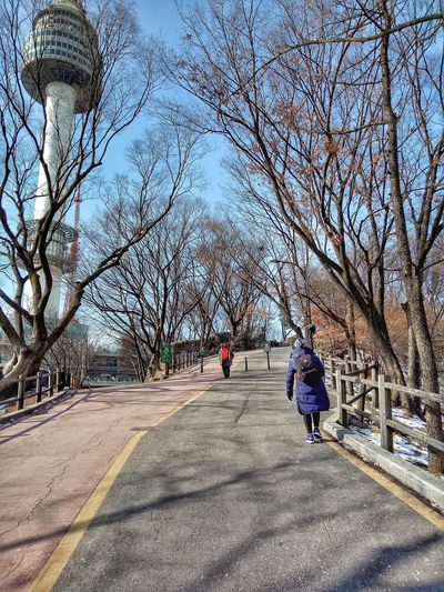남산타워 Namsan Tower  Love Walking Around Alone In The City  Alone Real People Day Walking The Way Forward Tree Outdoors Two People Nature Lifestyles Women Sky