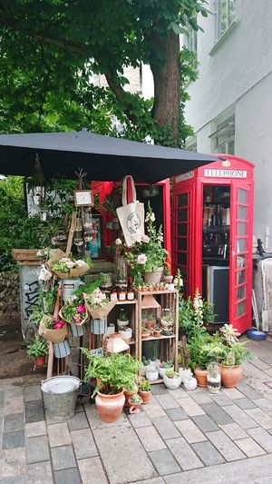 Smallest coffee shop and flower shop! Telephone Box Caffeine Flower Shop Coffee Shop Tiny Unusual Tree Flower Red Building Exterior Architecture