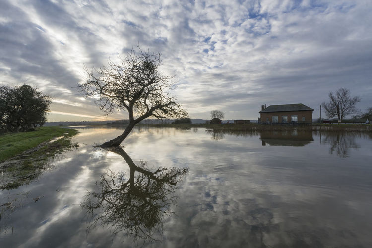 Wet Feet Noorthmoor Green Pumping Station Somerset Architecture Bare Tree Beauty In Nature Building Exterior Built Structure Cloud - Sky Flood Levels Nature No People Outdoors Parret Parrett Trail Plant Reflection River Scenics - Nature Sky Tranquil Scene Tranquility Tree Water
