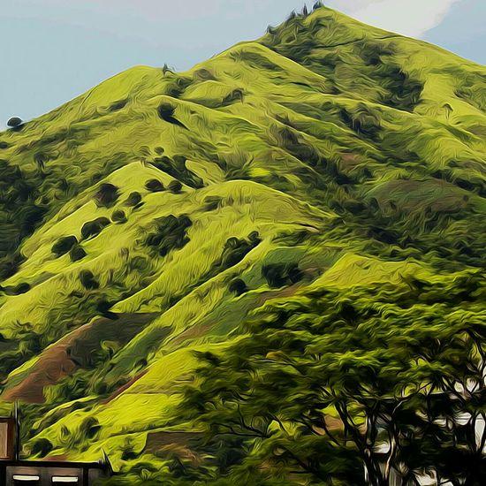 Oil paint effect landscape Artistic