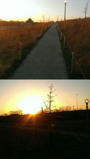 Walking my path as the sun shines on me...Enjoying The Sun EscapingWalking Around