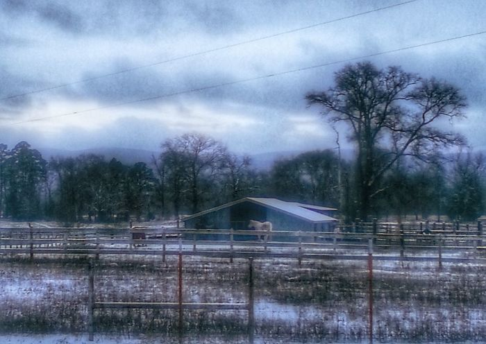 Happy Monday Winter Snow Days Rural Scene Leisure Activity Beauty In Nature, Landscape_Collection My Oklahoma Muse, Oklahoma From Where I Stand Cold Temperature Power In Nature Tranquility Dramatic Sky Landscape