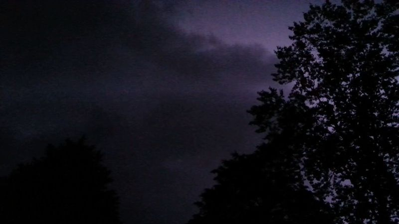 Tree Night Nature No People Outdoors Sky Lightning Behind Clouds Storm Cloud