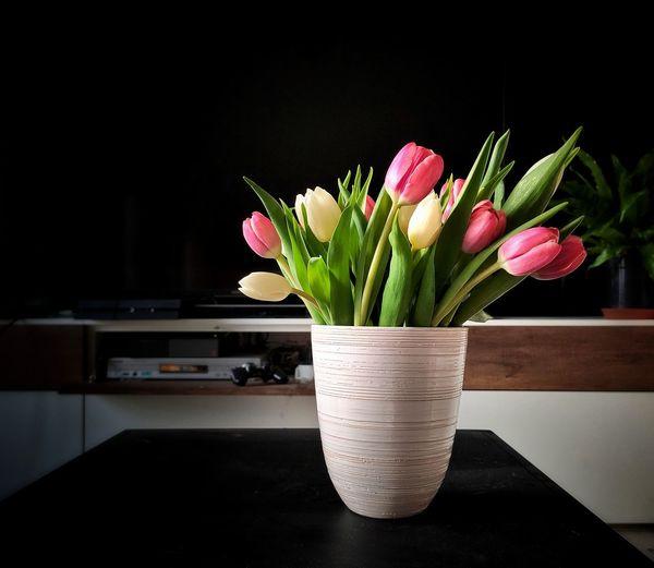 Close-up of flower vase on table against black background