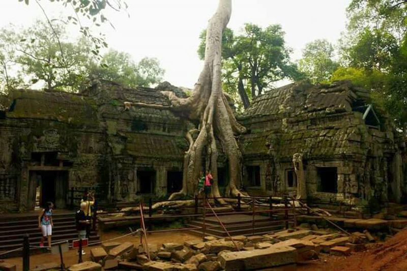 Southeastasia Lines And Shapes Pattern Pieces Lifeasiseeit Ta Prohm Tree Reclaiming Nature Architecture Angkor Wat Tomb Raider  Cambodia Southeast Asia Entrance Temple Worldheritage Doorway John Nelson History Jungle