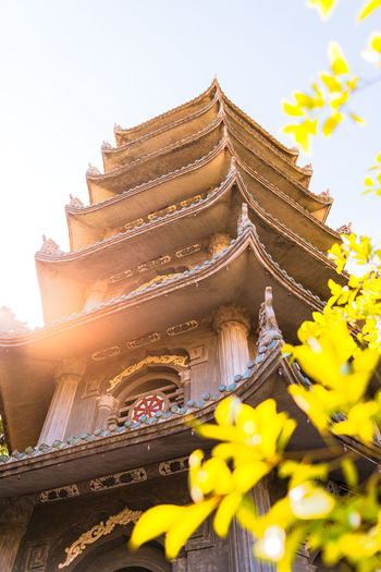 Place Of Worship Belief Religion Built Structure Architecture Building Exterior Sky Low Angle View Nature Building No People Roof Plant Yellow Day Outdoors Pagoda Tree Leafs Selective Focus Vietnam Đà Nẵng Clear Sky Sunlight Sun Travel Destinations Travel