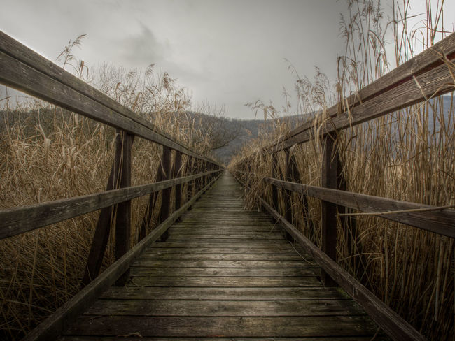 The point to vanish Absence Bogland Bridge Bridge - Man Made Structure Composition Connection Diminishing Perspective Engineering Fence Footbridge Grass High Dynamic Range Leading Long Marsh Narrow Outdoors Perspective Railing Rural Scene The Way Forward Winter Wood Wooden Eyeen Best Shots