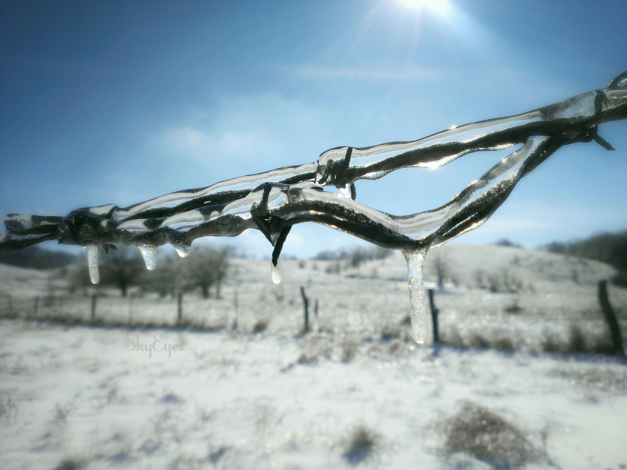 snow, winter, cold temperature, field, landscape, fence, season, sky, nature, weather, sunlight, covering, tranquility, frozen, protection, tranquil scene, day, rural scene, outdoors, no people