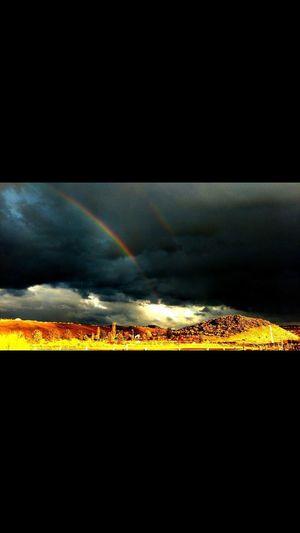 Scenics Rainbow