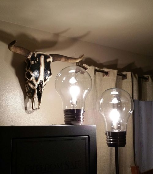 The OO Mission Light Bulbs Light Bulb Light 2 Light Bulbs Lamps Unique Style Different Look Bright Light Bulbs Sitting Room Painted Cow Head Gun Safe Cool Lights Two Is Better Than One