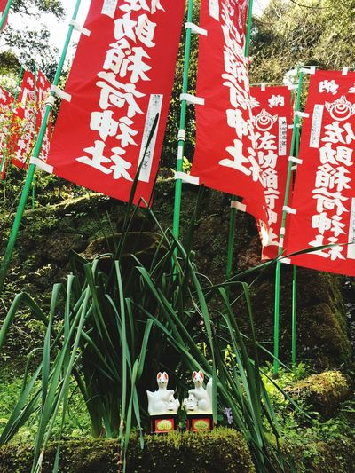 お稲荷さん パワースポット Power Spot Inari Shrine 鎌倉