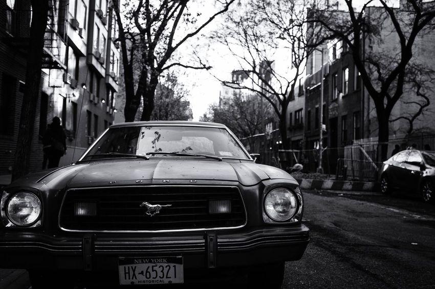 Fuji Fujifilm_xseries FUJIFILM X-T1 Fujifilm NYC NYC Street Photography NYC Photography NYC Street Travel Mustang Ford Mustang 2016 2016 EyeEm Awards Blackandwhite Photography EyeEm Best Shots - Black + White The Street Photographer - 2016 EyeEm Awards EyeEm