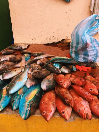 Fish for sale at market