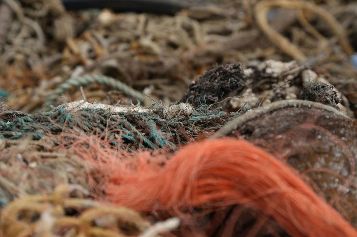 Plastikmüll, Geisternetz, Fischernetz Close-up Day Environment Fishernet Fragility Full Frame Ghostnet Nature Outdoors Part Of Plastic Plastic Waste Tranquility