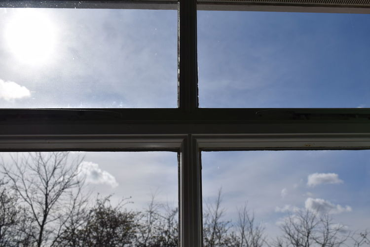 The view out of my window Backgrounds Blue Branches Bright Cloud Cloud - Sky Day Frame Nature No People Outdoors Silhouette Sky Square Sun Textured  Tree Trees View Wallpaper Window Window View Windowframe Windows Wood