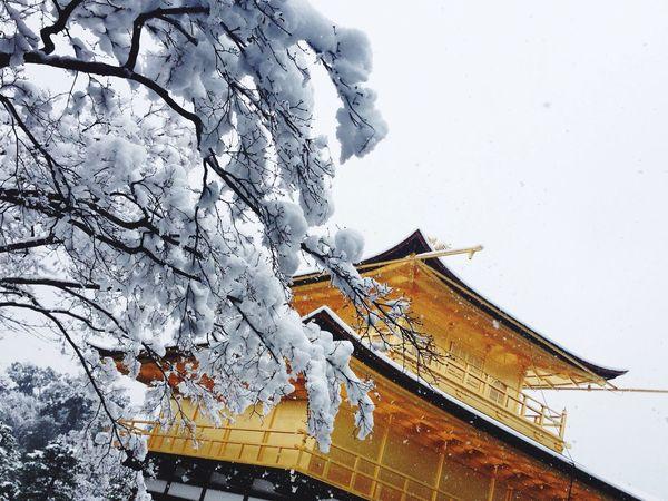 At 鹿苑寺(金閣寺) Kinkaku-ji Temple Japanese Temple