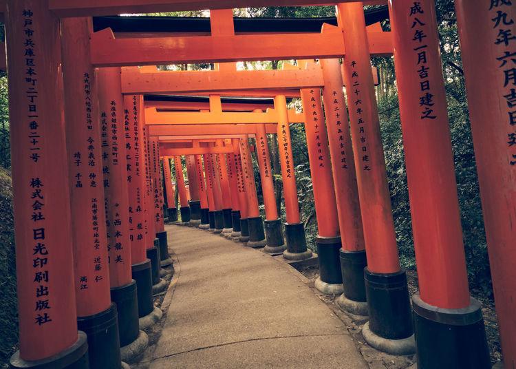Kyoto's spectacular Fushimi-Inari Taisha, its stunning walkways lined with tens of thousands of bright red torii Fushimi Inari Shrine Gate Kyoto Lantern Peace Place Of Worship Religion Serene Shrine Spirituality TORII Torii Gate
