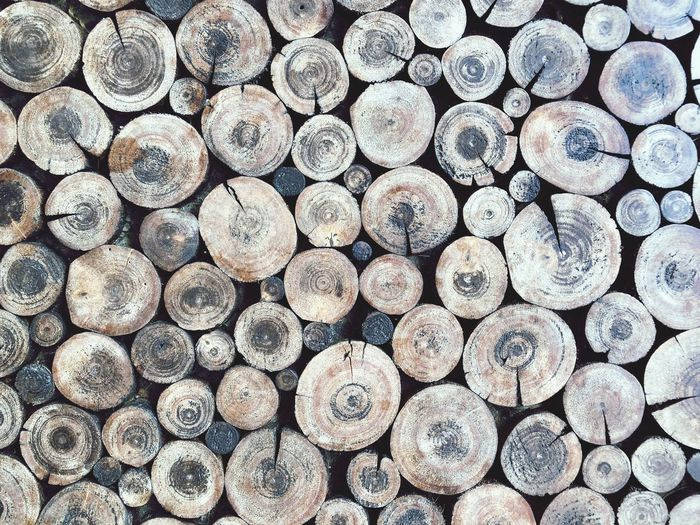 Circle of wood EyeEm Selects Full Frame Backgrounds Log Wood Timber Large Group Of Objects Repetition Deforestation No People Arrangement Pattern Stack Wood - Material Firewood Shape Textured  Forest Tree Lumber Industry Abundance