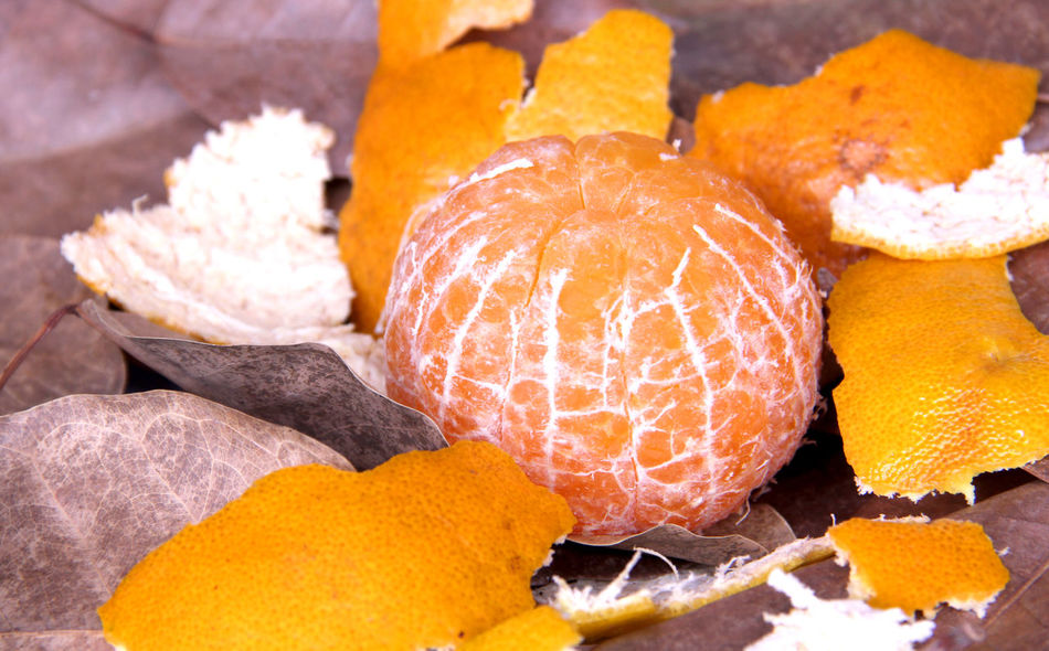 Orange fruit sweet and sour are on foliage in Thailand. Abundance Abundant Orange Orange Tree Health Fruit Sour Sweet Fruit Simple Autumn Crust Foliage Fresh Fresh Fruit Delicious Nature Health Tree Happiness Relax Thailand Backgrounds Holiday Food And Drink Food No People Close-up Day Indoors  Freshness Nature