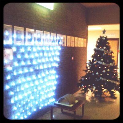 Het is nu stilaan welletjes geweest met die kerstboom hier op de gang.