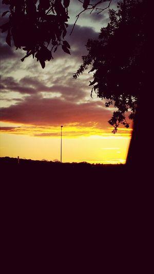 Sunset Corsano Boschetto