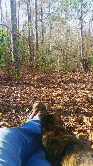 Enjoying my environment with my cat Jasmine. Cat Swamplife Trees Boots