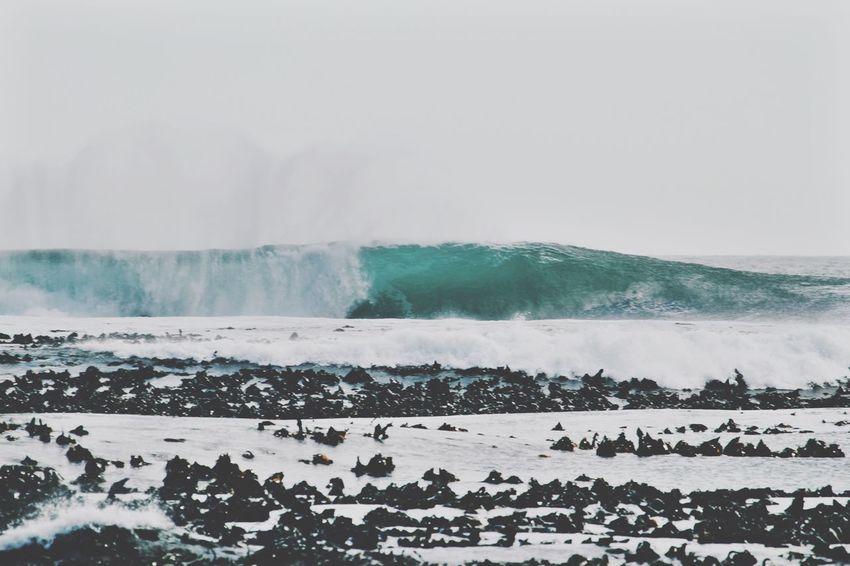Power of the ocean. Nature Ocean Waves Sunset Adventure Sea Winter Sky Surfing Eyeemawards16 Eyeemawards2016 EyeEm Awards 2016