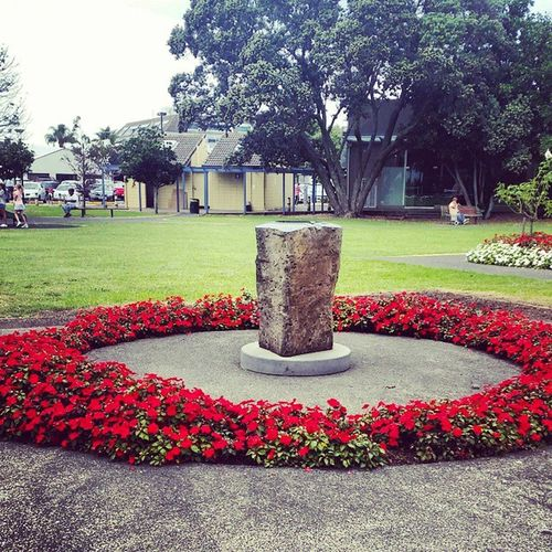 Takapuna and Red Flowers
