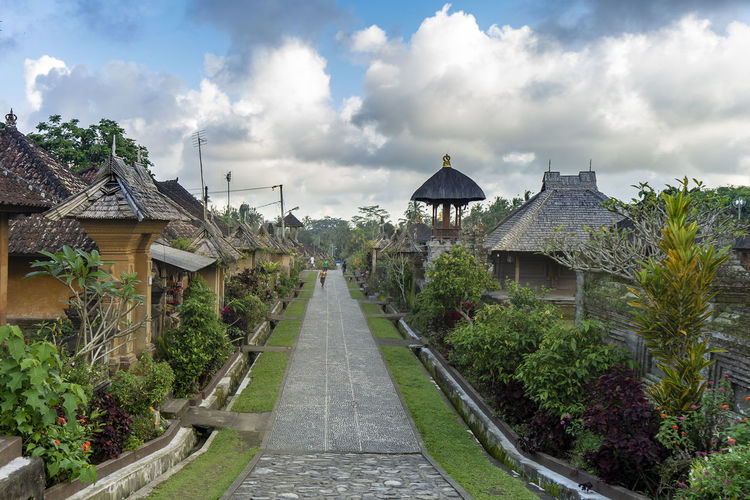 Panglipuran village Architecture Built Structure Plant Cloud - Sky Sky Tree Building Exterior Nature Direction Building The Way Forward Day No People Religion Place Of Worship Outdoors Belief Roof Spirituality Panglipuranvillage Bali INDONESIA Max Bowen