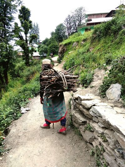 Normal life of mountain people...who collecting wood for making food ....from valley and track ~5-6 km high slop mountain ... Tribal Women Local Coustom The Portraitist - 2018 EyeEm Awards Working Tree Full Length Rear View Field Agriculture Standing Men Occupation Farmland Asian Style Conical Hat The Traveler - 2018 EyeEm Awards The Street Photographer - 2018 EyeEm Awards