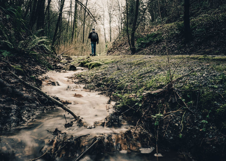Man standing by stream in forest