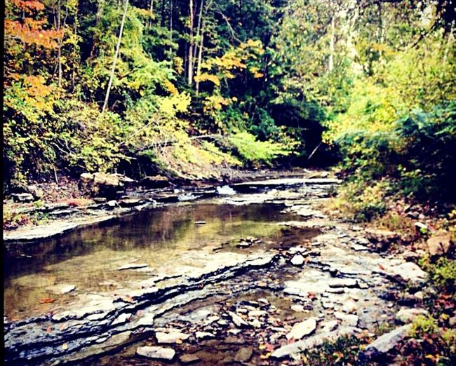 Madison Indiana Creek Autumn Hiking Adventure