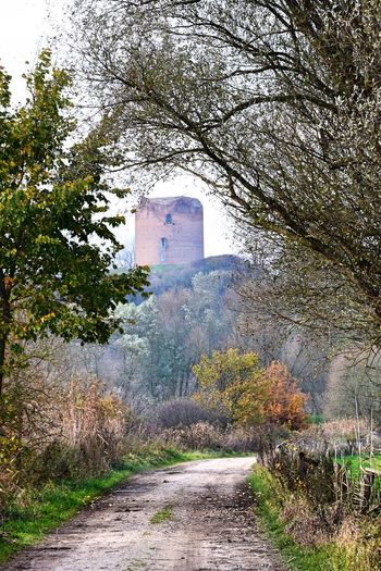 Burg Stolpe Historical Building Tranquility Architecture Building Exterior Built Structure Day Nature No People Outdoors The Way Forward Tree