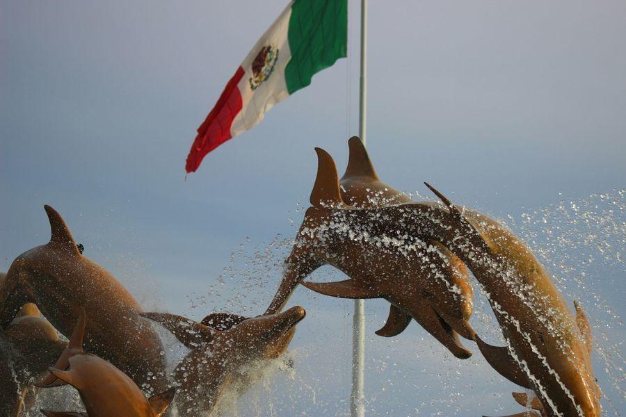 <3 Mexico Taking Photos