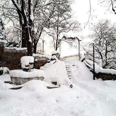 Bursa Bursakar Snowfall Snow Snowtrees Snowgate