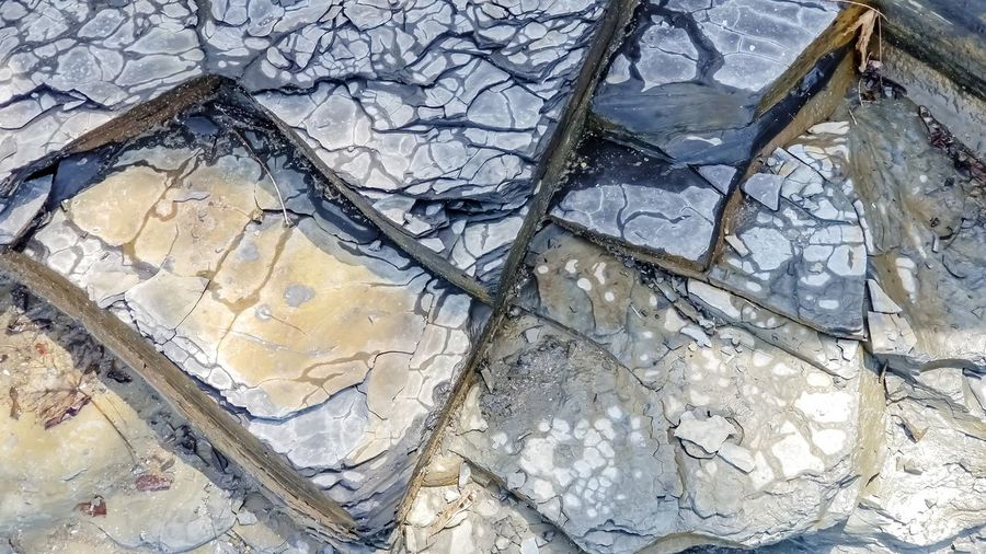 pattern of shale stone along lake Erie shoreline Bradleywarren Photography Bradley Olson Copy Space Room For Copy Room For Text Background Copyspace Abstract Abstract Backgrounds Stone Material Lines Geometric Shape Geometry Pattern Natural Pattern Natural Beauty Shale Beach Rocky Stone - Object Backgrounds Full Frame High Angle View Close-up Textured  Pattern Rough Rugged Cracked Surface Architectural Detail